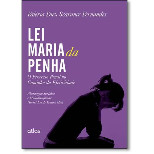 Lei Maria da Penha: o Processo Penal no Caminho da Efetividade