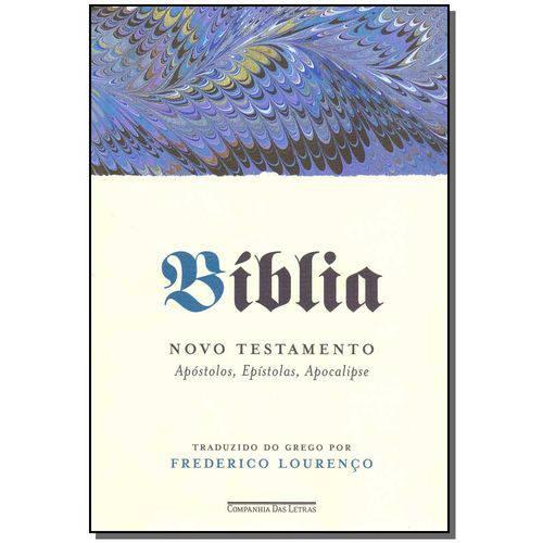 Livro - Biblia - Novo Testamento - Vol.02