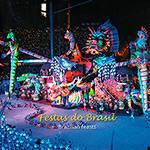 Livro - Festas do Brasil