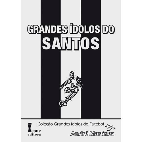 Livro - Grandes Ídolos do Santos