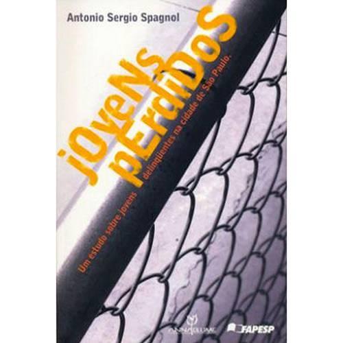 Livro - Jovens Perdidos: um Estudo Sobre Jovens Deliquentes na Cidade de São Paulo