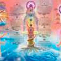 Livro - Mapa: os Sete Chakras Principais