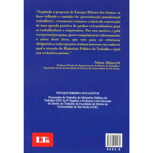 Livro - Microssistema de Tutela Coletiva, O: Parceirização Trabalhista
