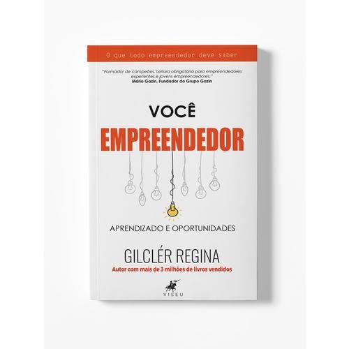 Livro - Você Empreendedor: Aprendizado e Oportunidades