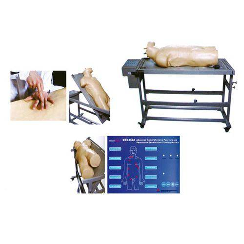 Manequim Avançado de Treinamento Punção Abdominal e Exame de Percussão - Anatomic - Código: Tgd-4026-a