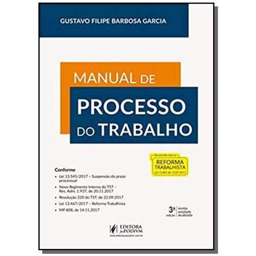 Manual de Processo do Trabalho 13