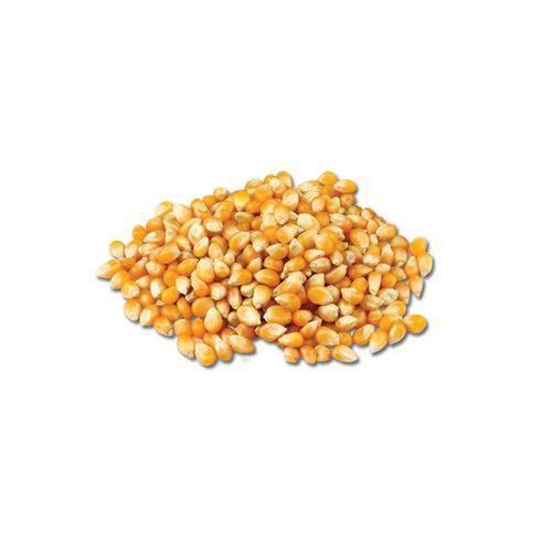 Milho de Pipoca Argentino Granel 10kg