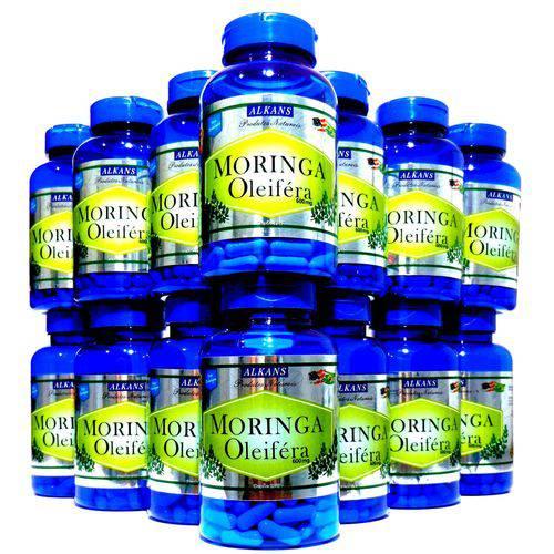 Moringa Oleifera Combo 20 Potes - 1200 Cápsulas 600mg