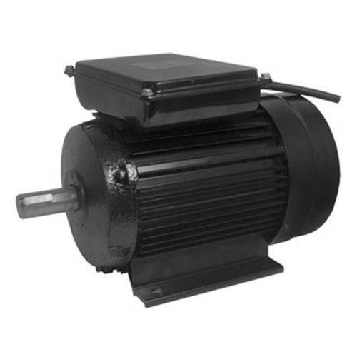 Motor Elétrico Fechado 4 Polos 1746 RPM Bivolt YL100L1-4 - Lynus