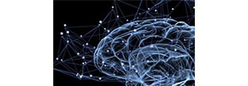 Neuroaprendizagem e Práticas Pedagógicas   UNIDERP   EAD - 10 MESES Inscrição