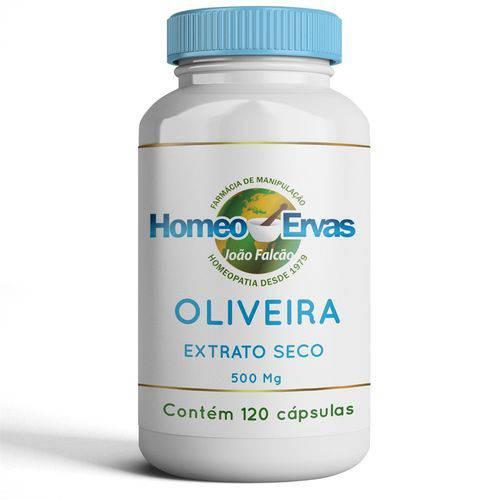 Oliveira Extrato Seco 500mg - 120 Cápsulas - Homeo Ervas