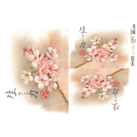 OPApel Decoupage Cód. 2314 Flor Cerejeira