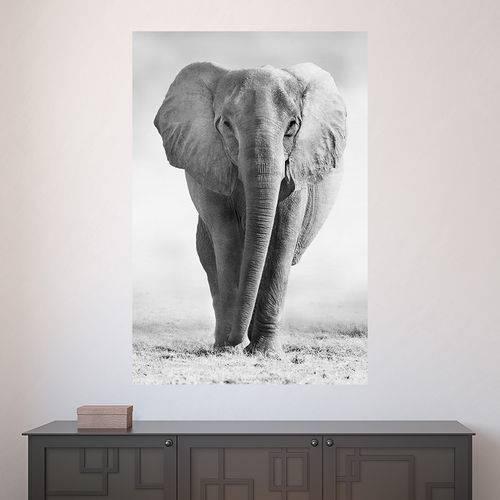 Painel Adesivo de Parede - Elefante - N2578