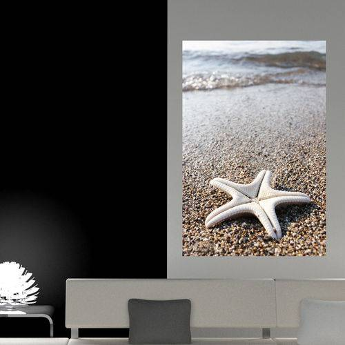 Painel Adesivo de Parede - Estrela do Mar - N3163