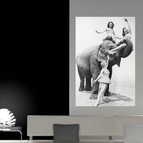 Painel Adesivo de Parede - Garotas e Elefante - N3168