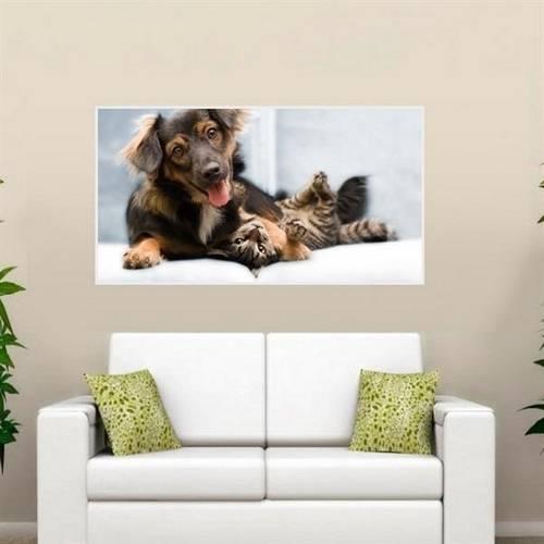 Painel Fotográfico Adesivo - Cachorro e Gato Modelo 04