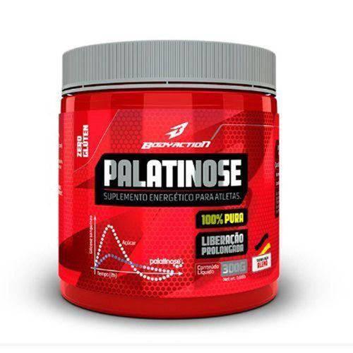 Palatinose - 300g - Bodyaction