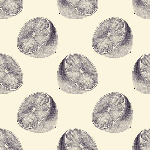Papel de Parede Adesivo - Limão - N0041