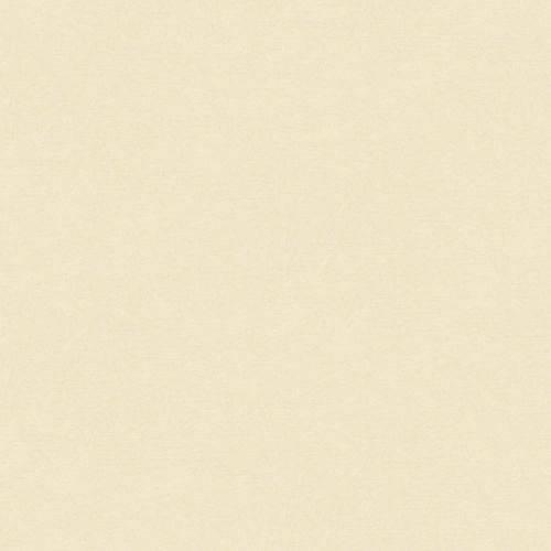 Papel de Parede Beautiful Home Liso Ii Vinilico Creme