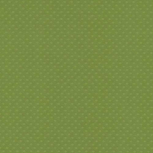 Papel Scrapbook Cardstock PCAR503 Bolinhas II Verde Relva