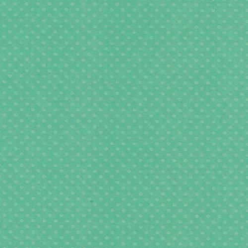 Papel Scrapbook Toke e Crie Pcar492 Dupla Face 30,5x30,5cm Cardstock Texturizado Bolinhas Verde Gelo