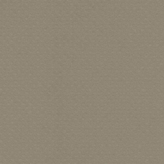 Papel Scrapbook Toke e Crie PCAR495 Dupla Face 30,5x30,5cm Cardstock Texturizado Bolinhas Cinza Claro