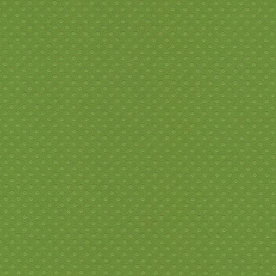 Papel Scrapbook Toke e Crie PCAR503 Dupla Face 30,5x30,5cm Cardstock Texturizado Bolinhas Verde Relva