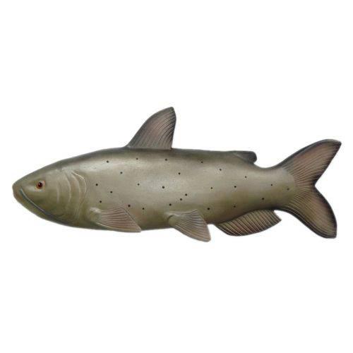 Peixe Catfish de Parede em Alto Relevo para Decoração.