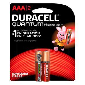 Pilha Alcalina Quantum AAA C/2 Duracell
