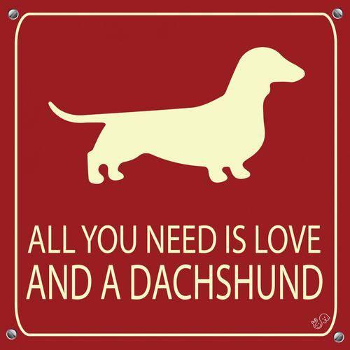 Placa de Decoração All You Need Is Love And a Dachshund
