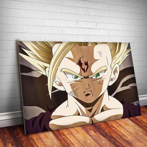 Placa Decorativa Dragon Ball 11