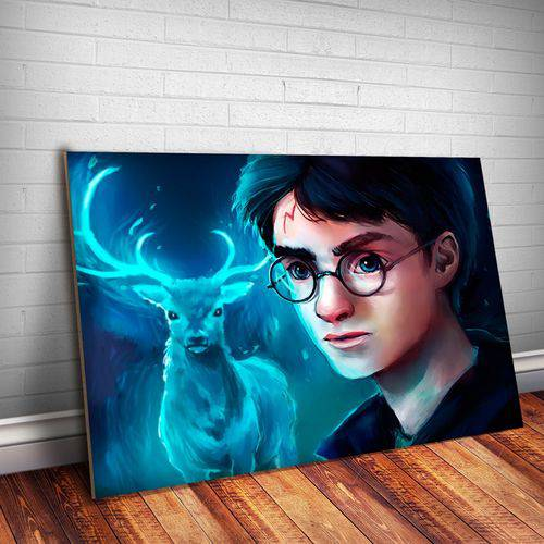 Placa Decorativa Harry Potter 29