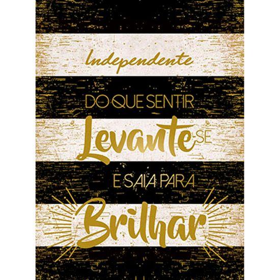 Placa Decorativa Saia para Brilhar 23x16,8cm Dhpmh-004 - Litoarte
