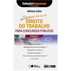 Principais Tópicos de Direito do Trabalho para Concursos Públicos: Coleção Concursos Audiolivro - Vol. II