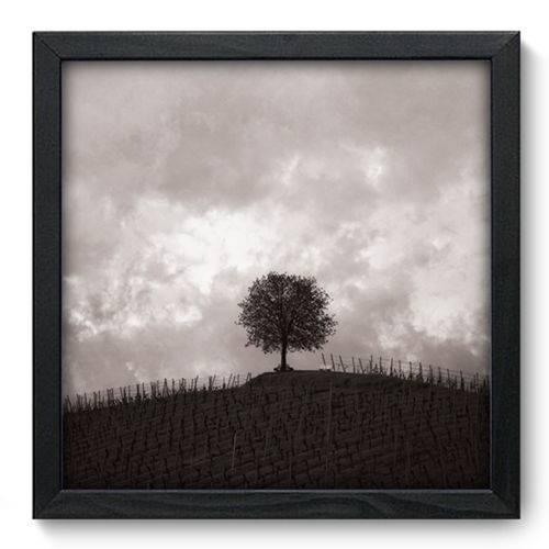 Quadro com Moldura - 33x33 - Árvore - N3029