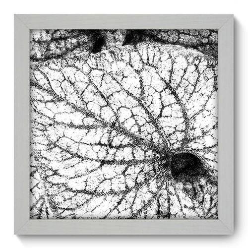 Quadro com Moldura - 22x22 - Folhas - N1060