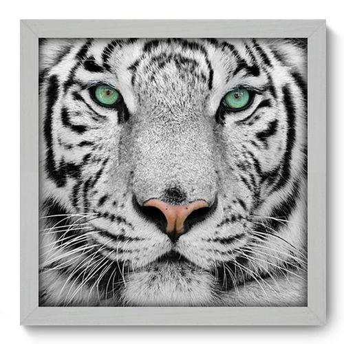 Quadro com Moldura - 33x33 - Tigre Branco - N1017