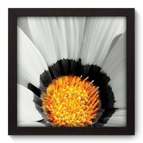 Quadro Decorativo - Flor - 22cm X 22cm - 007qnfap