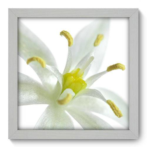 Quadro Decorativo - Flor - 22cm X 22cm - 010qnfab