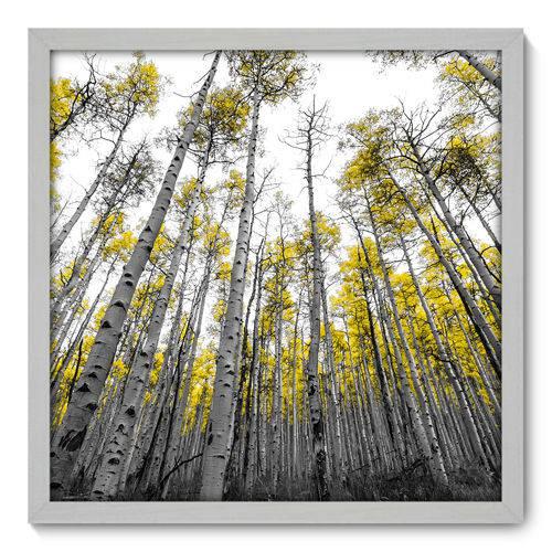 Quadro Decorativo - Floresta - 50cm X 50cm - 060qndcb