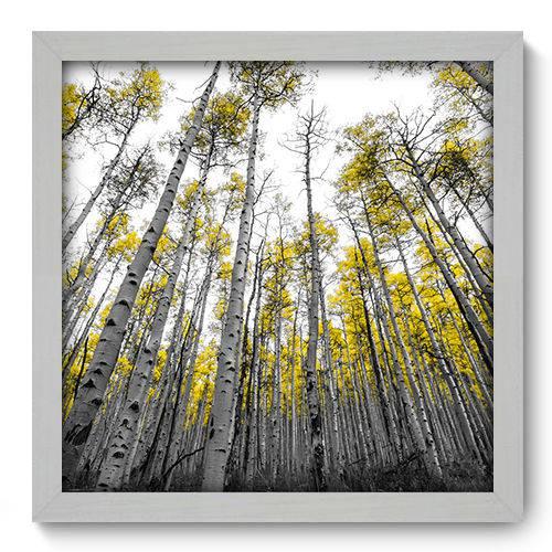 Quadro Decorativo - Floresta - N2060 - 33cm X 33cm
