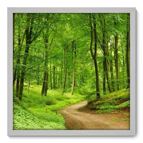 Quadro Decorativo - Floresta - N3139 - 50cm X 50cm