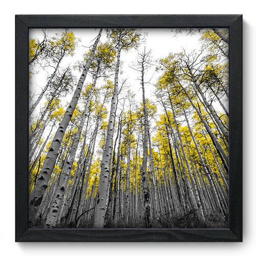 Quadro Decorativo Floresta N6060 33cm X 33cm