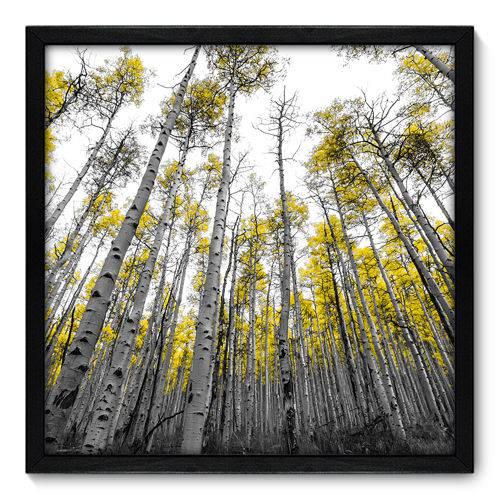 Quadro Decorativo - Floresta - N7060 - 50cm X 50cm
