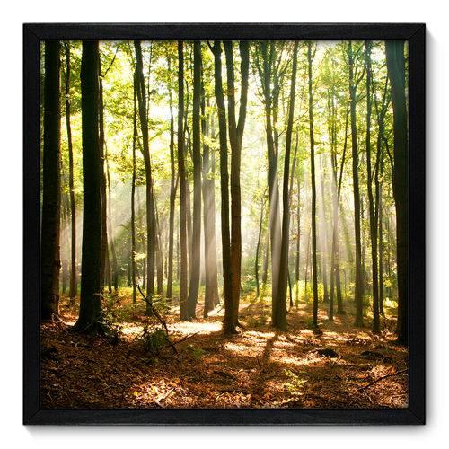 Quadro Decorativo - Floresta - N7074 - 50cm X 50cm