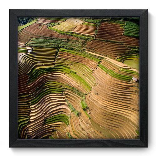 Quadro Decorativo Plantação N6134 33cm X 33cm