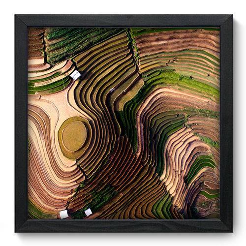 Quadro Decorativo Plantação N6135 33cm X 33cm
