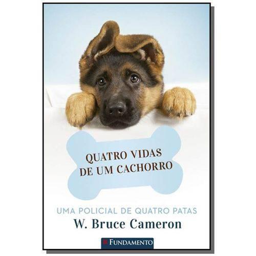 Quatro Vidas de um Cachorro - (fundamento)