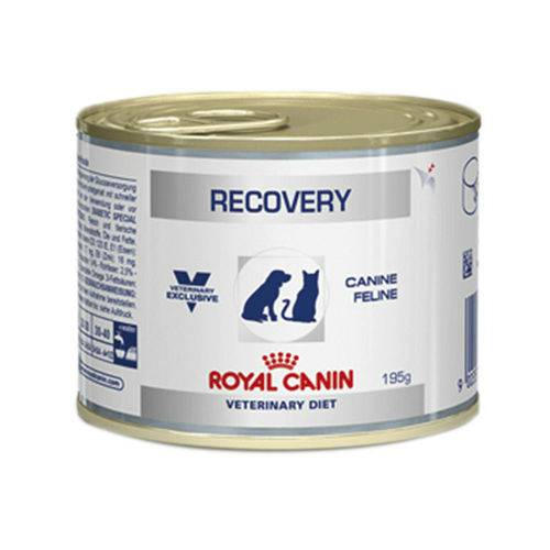 Recovery Royal Canin Veterinary Ração Lata – Cães e Gatos – 195 G