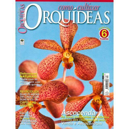 Revista Como Cultivar OrquÃdeas 40